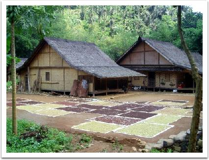 Download this Mengenal Arsitektur Rumah Adat Baduy picture